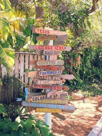 Island Bay Resort : The grounds.