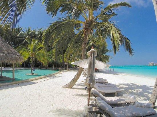 Gili Lankanfushi Maldives : MAIN POOL