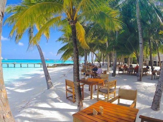 Gili Lankanfushi Maldives : RESTAURANT PLEIN AIR