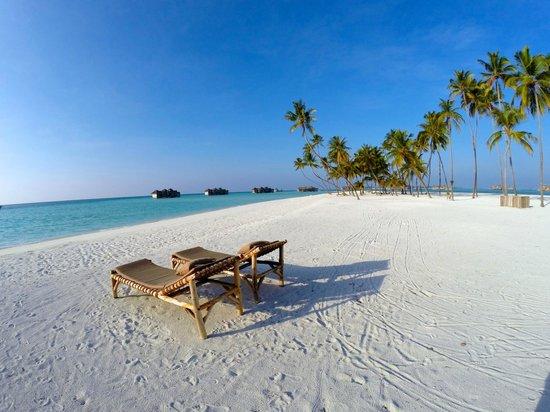 Gili Lankanfushi Maldives : PLAGE