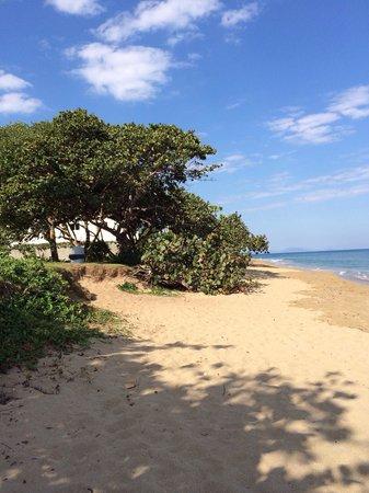 Grand Laguna Beach : The beautiful beach