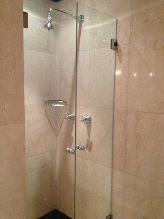Hotel Principe Di Savoia: Good shower