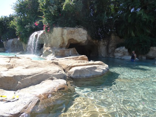 Discovery Cove: Relax
