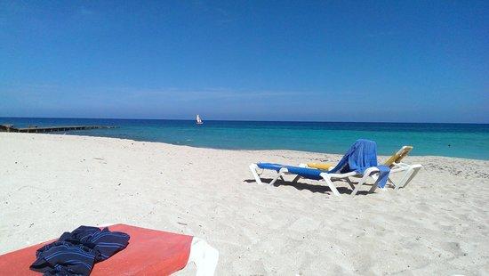 Hotel Oasis: beach