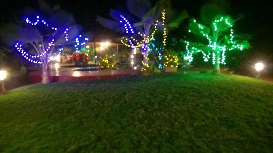 The Fern Gardenia Resort : Outside Area
