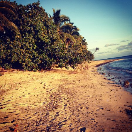 Rarotonga Daydreamer Resort: Beach near day dreamer