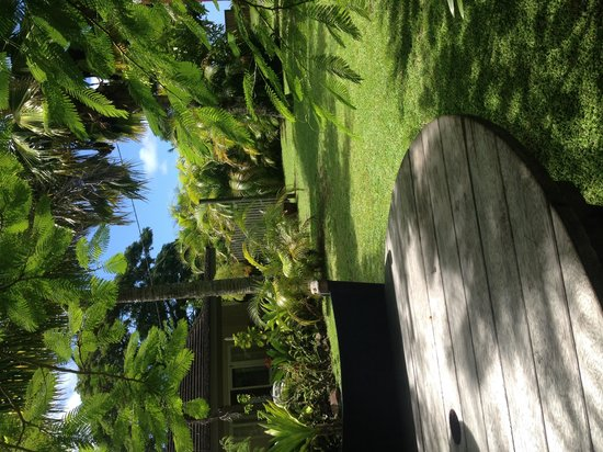 Rarotonga Daydreamer Resort: Outside area