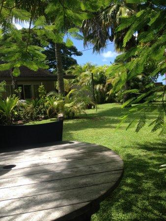 Rarotonga Daydreamer Resort : Outside area