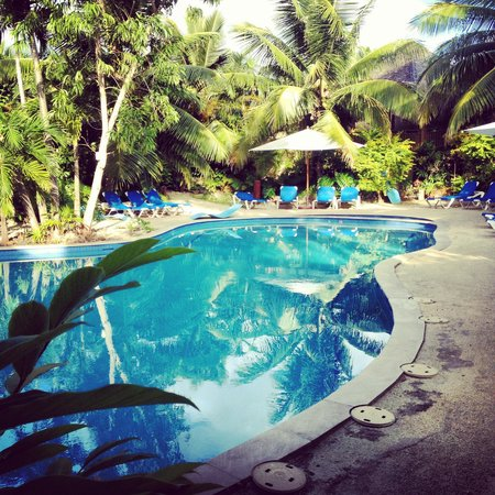 The Rarotongan Beach Resort & Spa : Pool