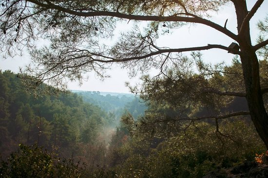 Kursunlu Waterfalls : Куршунлу. Вид на ущелье сверху.