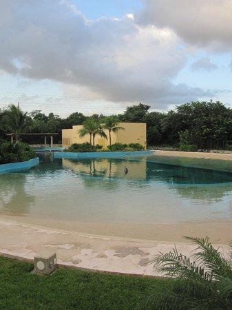 Dolphinaris Riviera Maya Park: We had envisioned a more natural setting than the small pools at Dolphinaris Park Riviera Maya