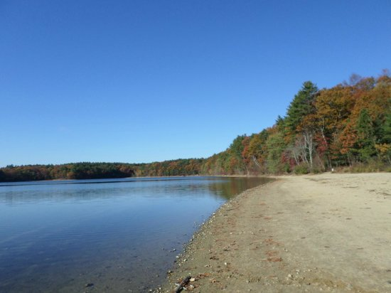 Walden Pond State Reservation: A beautiful morning on Walden Pond~