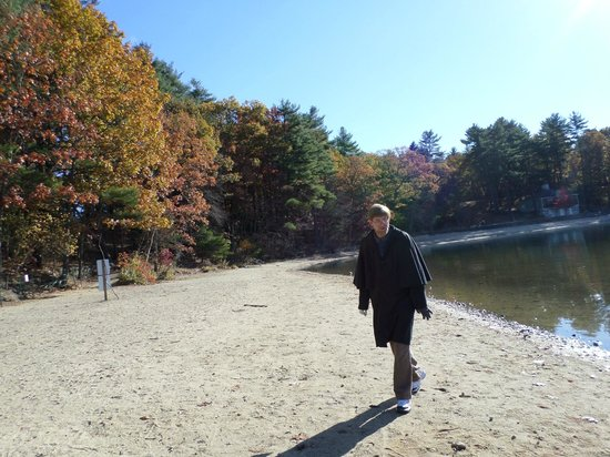 Walden Pond State Reservation: Beautiful Last Week Of October (walden pond)