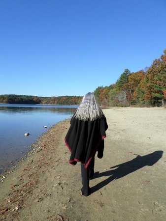 Walden Pond State Reservation: Walden Pond