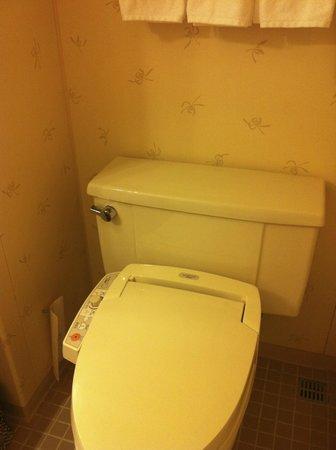 Hilton Tokyo: old bathroom