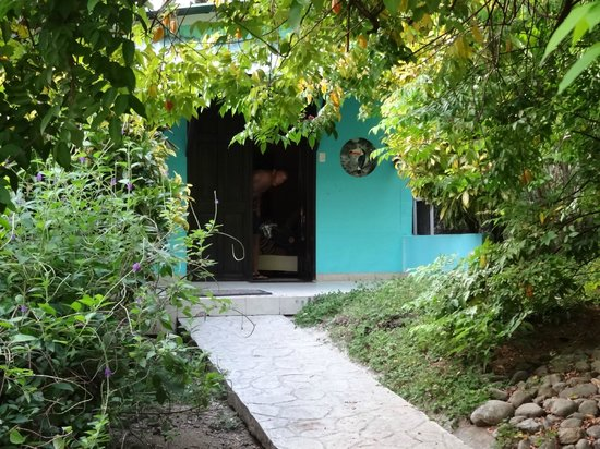 Costa Paraiso : Tucans nest :)