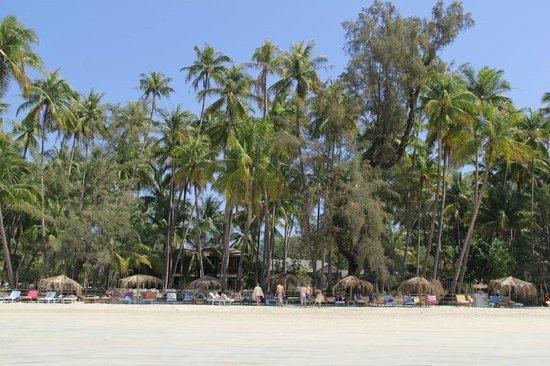 Royal Beach Motel : plage de l'hôtel