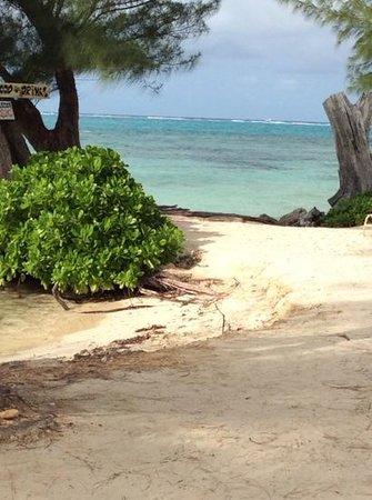 Bona Fide - Cayman: oh yeah