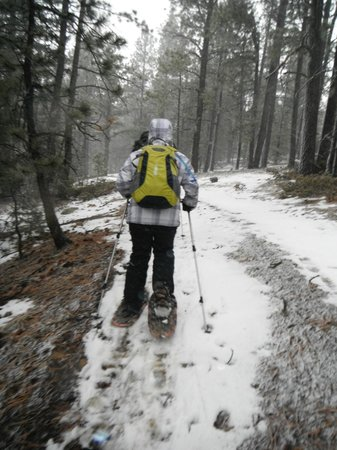 Taos Snowshoe Adventures : awesome