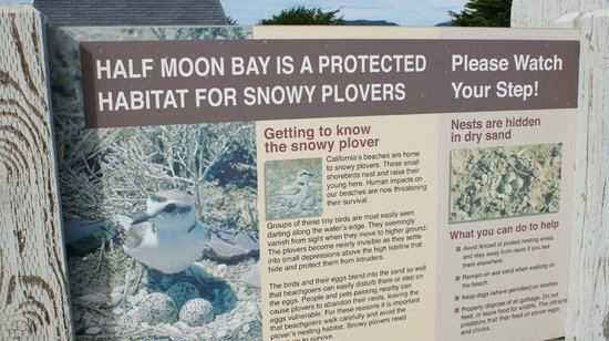 Signage at Half Moon Bay State Beach