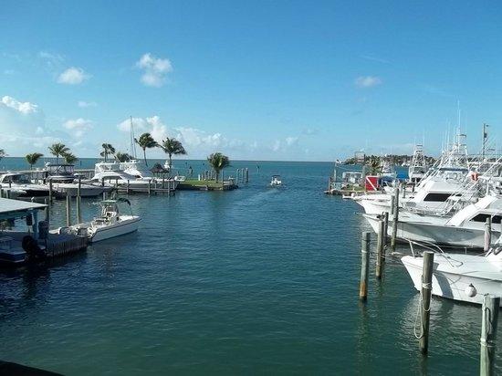 Postcard Inn Beach Resort & Marina: View from room 620