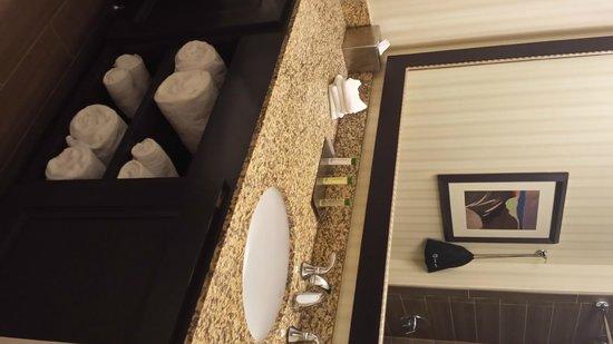 DoubleTree Suites by Hilton Orlando - Disney Springs Area: nice big bathroom sink