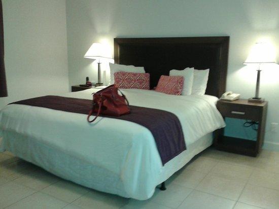 Collins Hotel : La 226