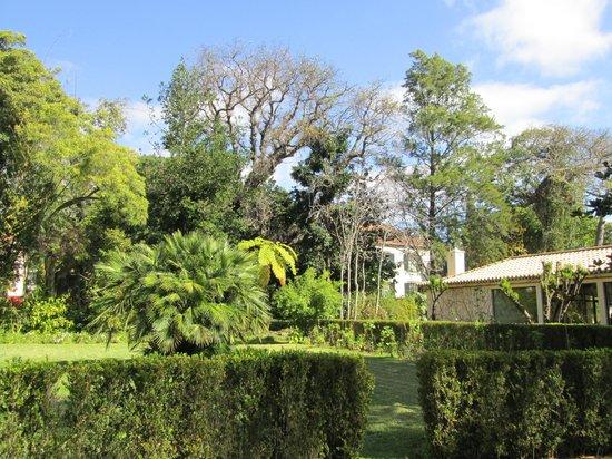 Quinta da Bela Vista: Lovely gardens
