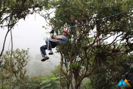 Mountain Views Inn: Ziplining in the Rainforest on the Adventure Tour