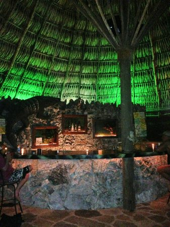 Paya Bay Resort : Black Iguana Bar at night