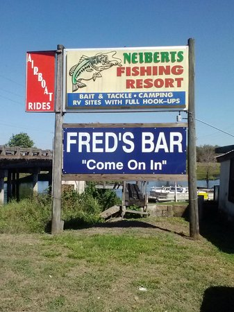 Airboat Wildlife Adventures: The boat launch is outside of Fred's Bar go to the bar and pay for your reservation and go outsi