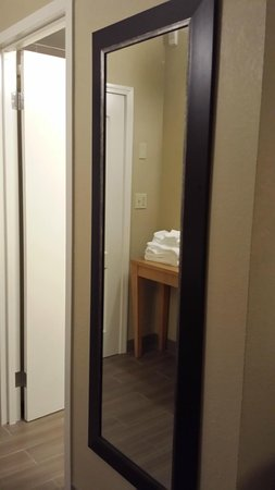 DoubleTree Suites by Hilton Orlando - Disney Springs Area : Nice to have a long mirror