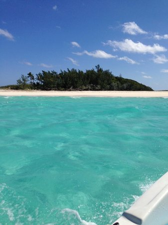 Abaco Beach Resort and Boat Harbour Marina: drink it up if you're lucky!