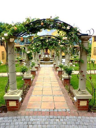 Franschhoek Country House & Villas: Hotel grounds