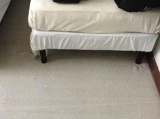 DC & Szana's Country Cabana: floor in room