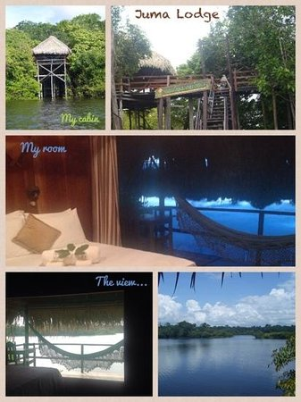 Juma Amazon Lodge: collage photo
