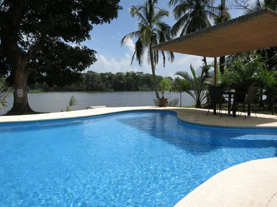 Manatus Hotel : Pool.