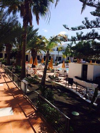 LABRANDA Playa Club : Vy över poolen från trädgårdssidan