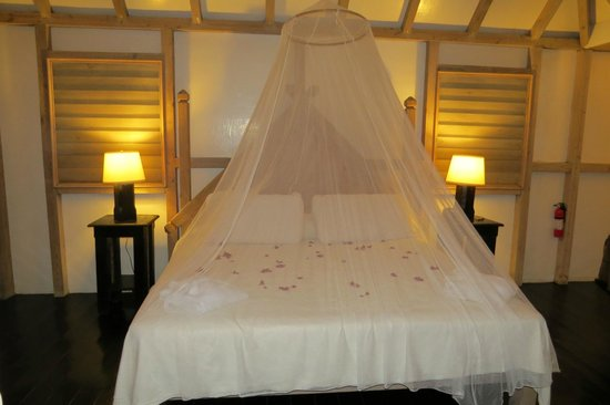 Mosquito Netting Over Beds