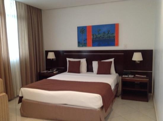 Manaus Hoteis - Millennium : room