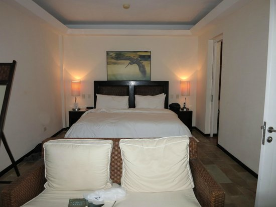 Gaia Hotel & Reserve: jungle room