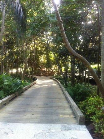 The St. Regis Bahia Beach Resort : Walkway leading to suite