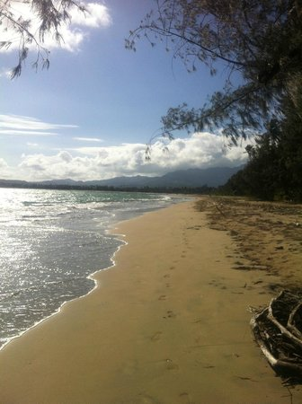 The St. Regis Bahia Beach Resort: Morning walk on the beach