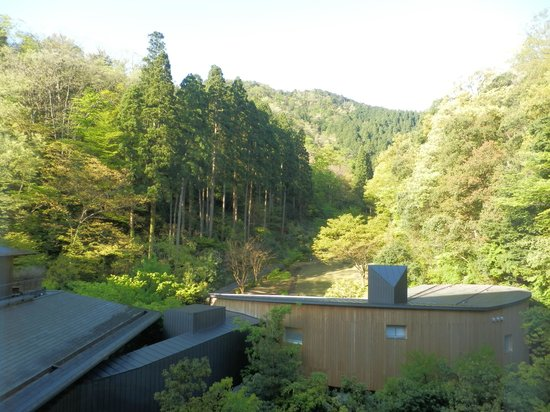 Kinosaki Onsen Nishimuraya Hotel Shogetsutei: 部屋からの眺め 景観はイマイチかな