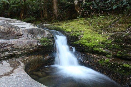 Liffey Falls: The small waterfall before liffey fall