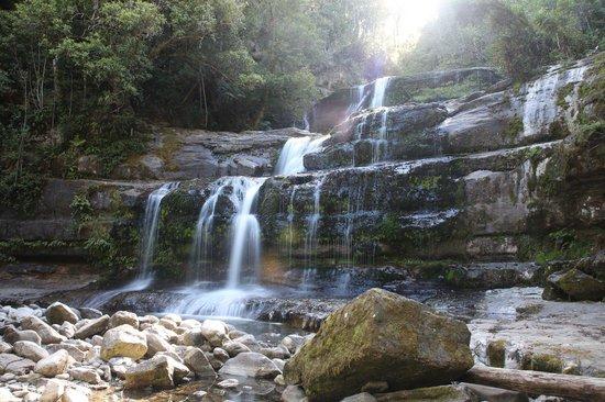 Liffey Falls: Close view of the fall