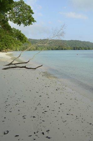 Lonnoc Beach Bungalows: Beach
