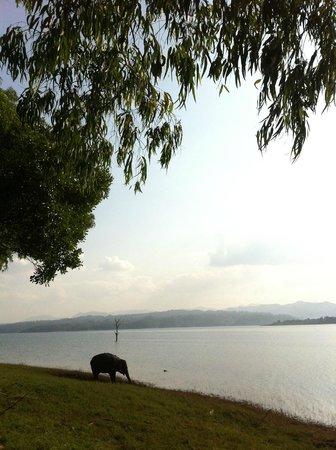 Ganesha Park : Au bord du lac, à Ganeshapark