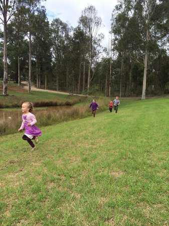 RidgeView Restaurant,Wines & Cottages : Plenty of space for the kids to run.