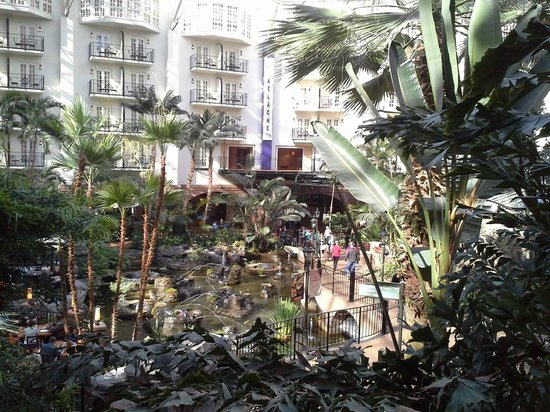 Gaylord Opryland Resort & Convention Center: The Cascades section